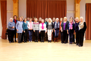 Angmering Voices 2014